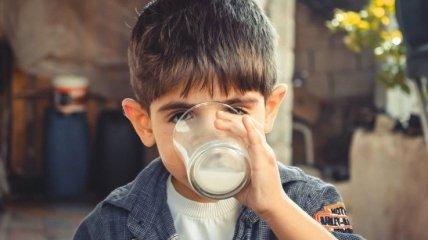 Непереносимость лактозы: почему некоторые люди не воспринимают молоко и что с этим делать