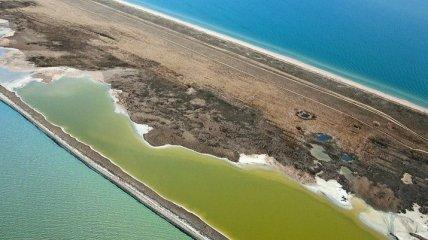 В Азовском море утонули сразу пятеро отдыхающих