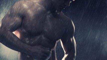 Какие структуры дают мышечную силу?