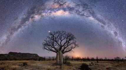 Любовь с первого взгляда: красочные пейзажи Западной Австралии (Фото)