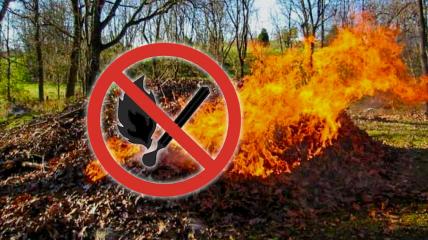 Поджигания листьев или травы запрещено законом