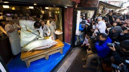 В Японии продавался самый крупный голубой тунец