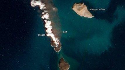 В Красном море образовались два новых острова