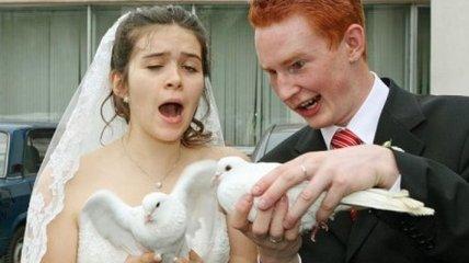 Самые смешные и нелепые свадебные снимки (Фотогалерея)