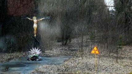 Снимки из Чернобыля, от которых бросает в дрожь (Фото)
