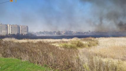 В Балаклее горят гектара камыша