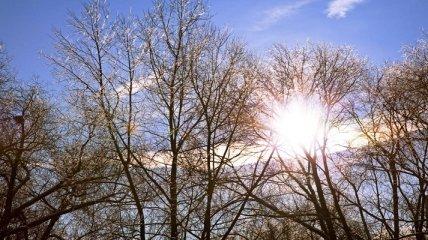 Преимущественно сухо и морозы до -12: синоптик дала прогноз погоды на 9 марта