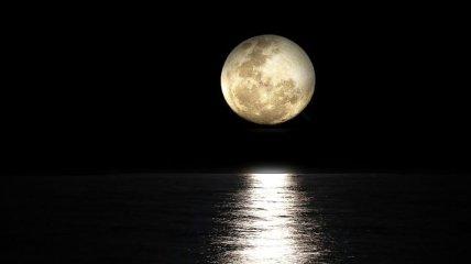 Цветочная луна: когда можно увидеть последнюю в 2020 году суперлуну