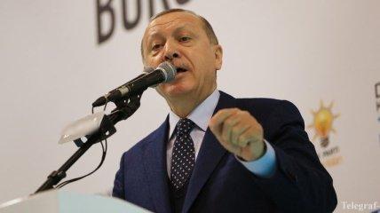 Эрдоган: Анкара не планирует захватывать территорию Сирии