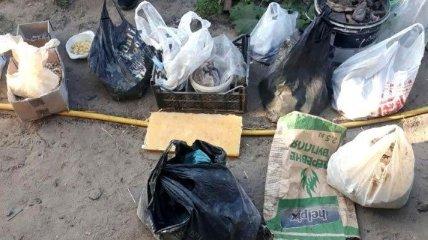 В Ровенской области изъяли почти 40 кг незаконно добытого янтаря-сырца (Фото)