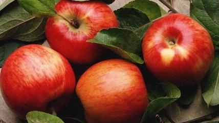 Яблочная диета: стройная фигура за 6 дней