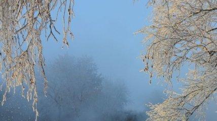 Сегодня в Украине будет туманно