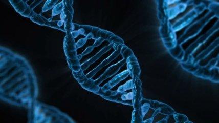 Спасет ли CRISPR от рака? Первые результаты исследования