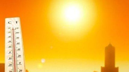 2020 год может стать самым жарким в истории наблюдений