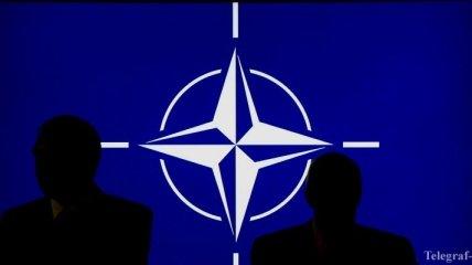 Страны НАТО будут сотрудничать в сфере разработки морских беспилотников
