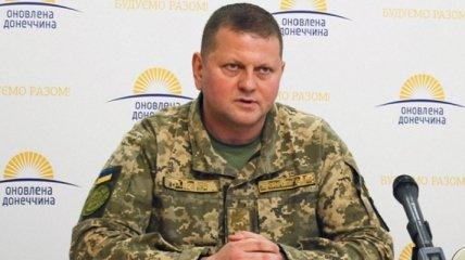 Новым главкомом ВСУ назначен Валерий Залужный: биография генерал-майора