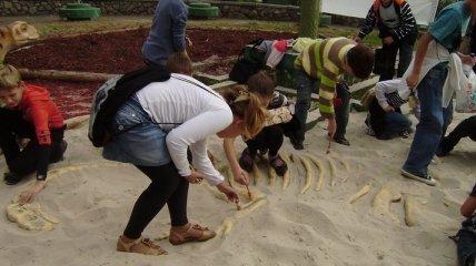 """Археолог-любитель"" обнаружил скелет мамонта"