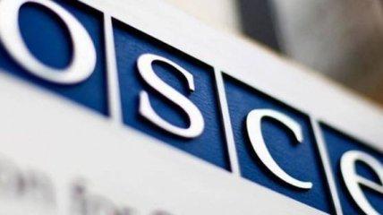 Боцюркив: Миссия ОБСЕ поддерживает мирный план Порошенко