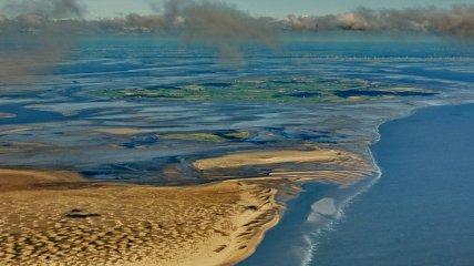 Ваттовое море: что это такое и почему Google посвятил ему дудл