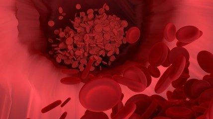 Натуральные средства, которые помогут улучшить кровообращение