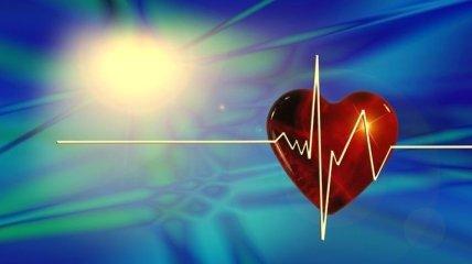 Продукты, которые улучшают работу сердца