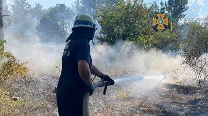 Огонь на Хортице удалось ликвидировать: полиция выясняет причины пожара (фото)