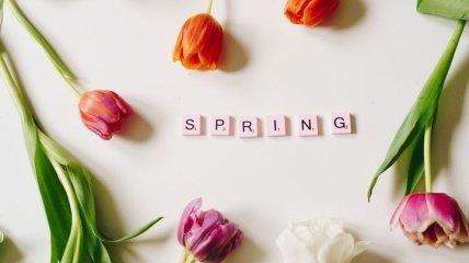 С первым днем весны! Красивые картинки и поздравления