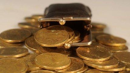 В Украине вдвое снизился средний размер субсидий