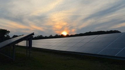 Обратная сторона медали: как возобновляемая энергетика вредит природе