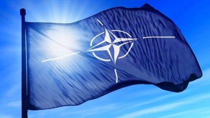 """""""Крым - это Украина, не Россия"""": военные НАТО не намерены уходить из Черного моря"""