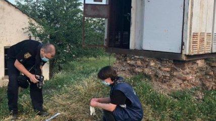 В Одесской области маленький мальчик полез в трансформаторную будку и погиб (фото)
