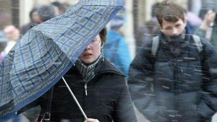 Порывы до 15-20 м/с: киевлян предупреждают о сильном ветре