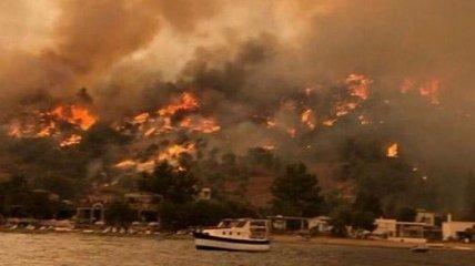 У Туреччині зросла кількість загиблих від пожежі, вогонь майже добрався до ТЕС і аеропорту Бодрум (фото, відео)