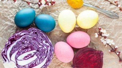 Чим пофарбувати яйця на Великдень: 7 натуральних фарбників
