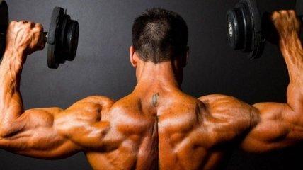 Диетологи назвали лучшие продукты для набора мышечной массы