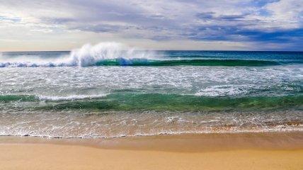 Создана губка, способная всасывать из морской воды уран