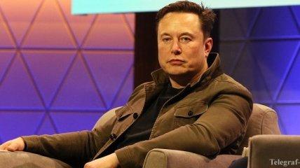 Илон Маск: Мировое население стремительно движется к своему коллапсу