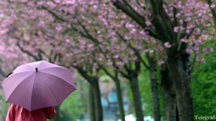 В Украине ожидается небольшой дождь