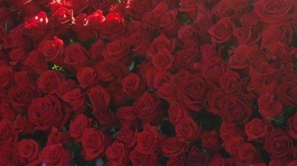 В Болгарии пройдет ежегодный фестиваль роз