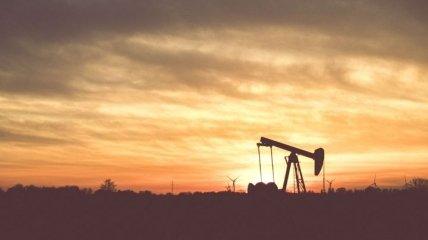 Цены на нефть начали падать после роста накануне