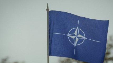 Большинство жителей Финляндии не желают вступления их страны в НАТО