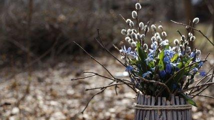 Последнее Новолуние зимы-2020: каким будет начало весны
