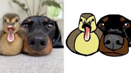 """""""Плохо нарисованные животные"""": юморной аккаунт в Twitter"""