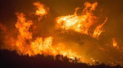 Жертвами масштабних пожеж у Туреччині стали шість осіб, поліція затримала палія