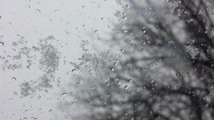 Дожди, мокрый снег и ночные заморозки: какой будет погода на этой неделе