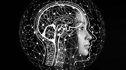 Мозг человека вдохновил ученых на создание нового метода обучения ИИ