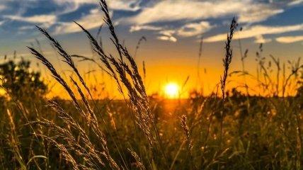 Какого числа летнее солнцестояние в 2020 году