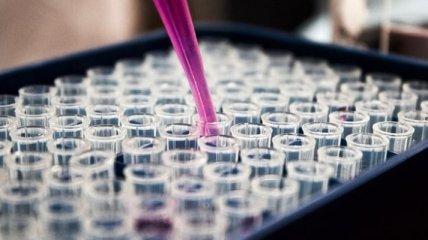 В США проведут первые испытания вакцины от COVID-19 на людях