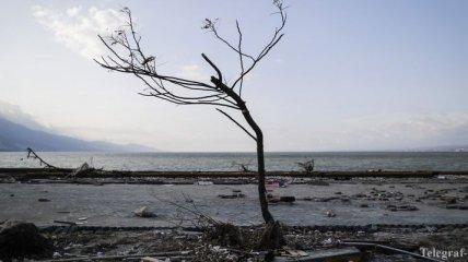 """Индонезию всколыхнуло """"опустошительное"""" землетрясение"""