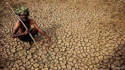 В Индии от жары погибли уже более 1000 человек
